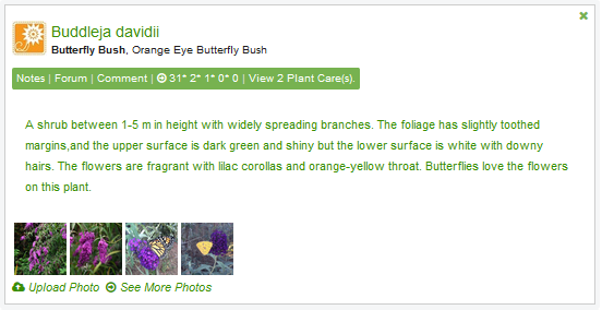 Create your personal plant list!