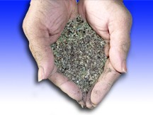 Hands with Organic Fertilizer